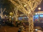 Winter Trees Festival lights up Mary St