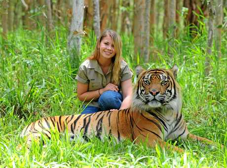 Bindi Irwin with Sumatran tiger Bashii.