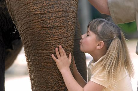 Bindi Irwin kisses an elephane during a press conference for her show, The Jungle Girl.