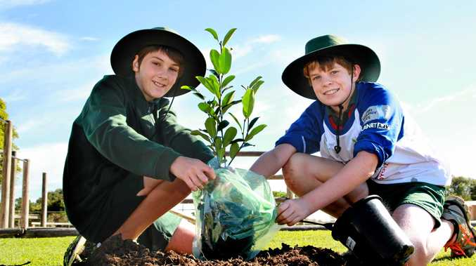 GO GREEN: Woongarra State School students Liam Richter and Jordan Winning both take part in the Planet Ark's National Tree Day. Photo: Zach Hogg / NewsMail