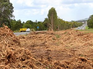 LETTER: Tree clearing laws need support