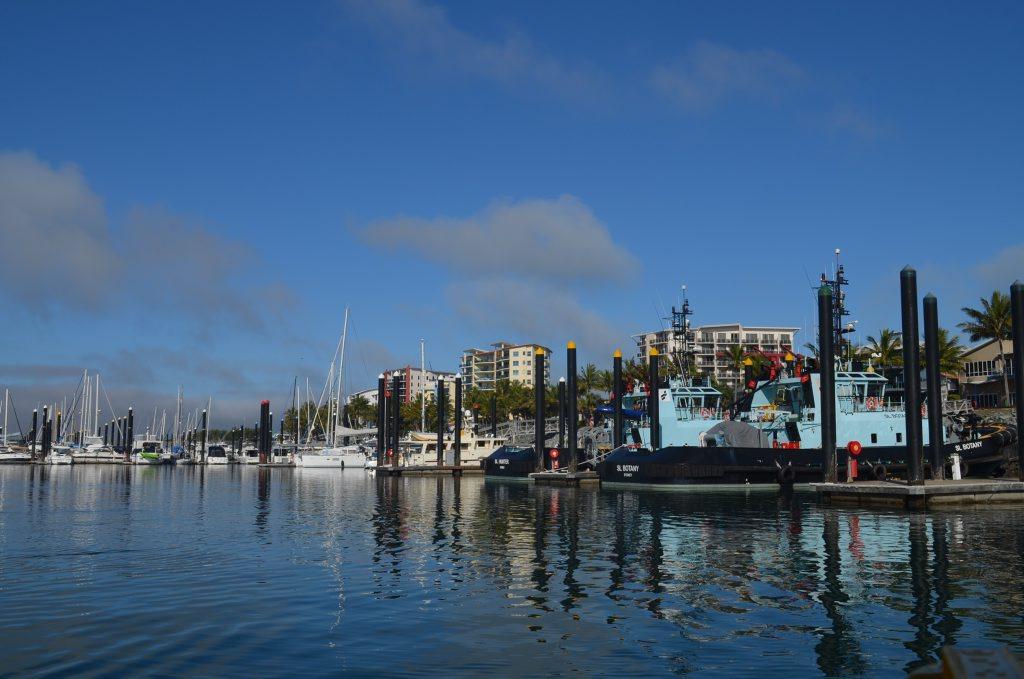 Chippie lands huge catfish at Mackay Marina