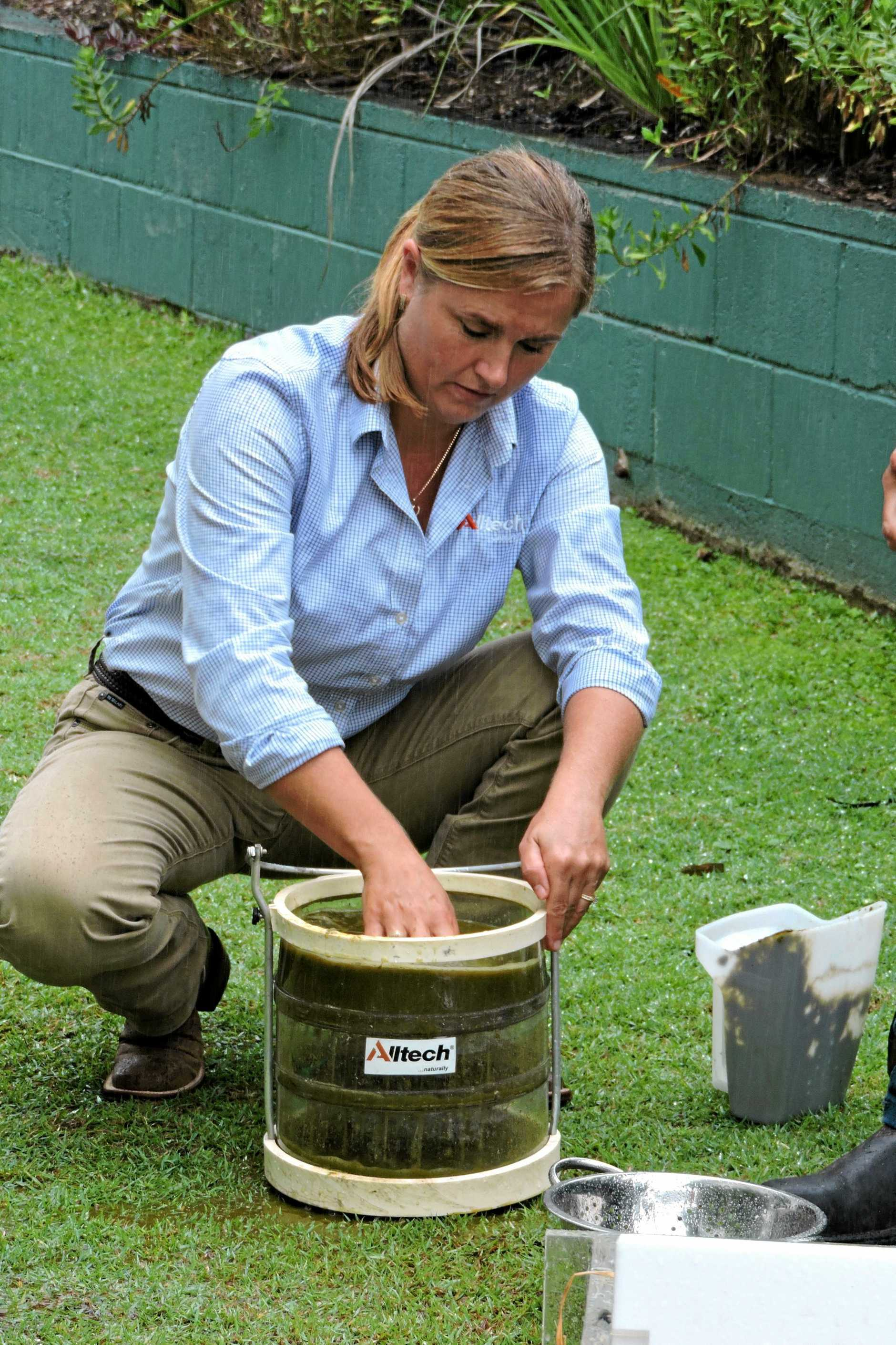 MANURE: Suzanne Roth washes a manure sample through different size sieves to show how well feed has been digested.