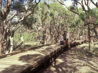 Purga Nature Reserve has walks perfect for the whole family. Source: Ipswich City Council.