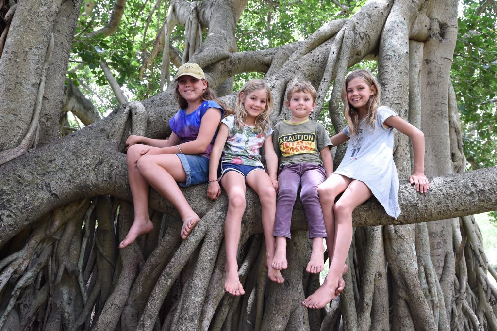 SEEKING SHADE: Kids escaping the heat in the Banyan tree in Queens Park, Maryborough. Pictured is Erin,11, Hayley, 6, Daniel,4, and Taylor, 8, Guy from Hervey Bay.