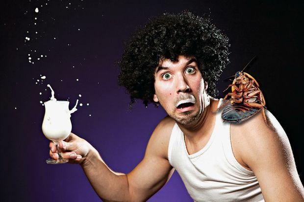 Fancy a glass of cockroach milk?