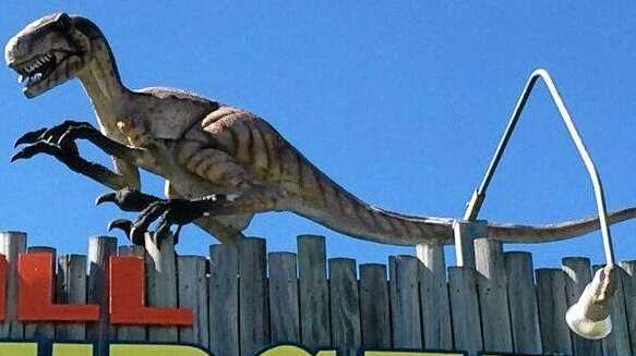 A Raptor, similar to this one, was stolen from Eatons Hill Veterinary Surgery in Brendale. Photo: contributed