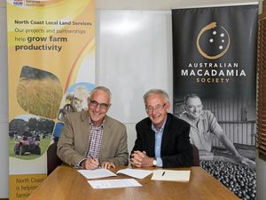 New partnership to 'build a strong future' for macadamia industry