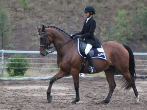 South Burnett rider qualifies for dressage nationals