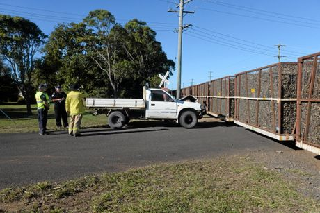 CANE COLLISION: Trains were running smoothly shortly after a ute collided with a cane train on Tolls Road Welcome Creek.