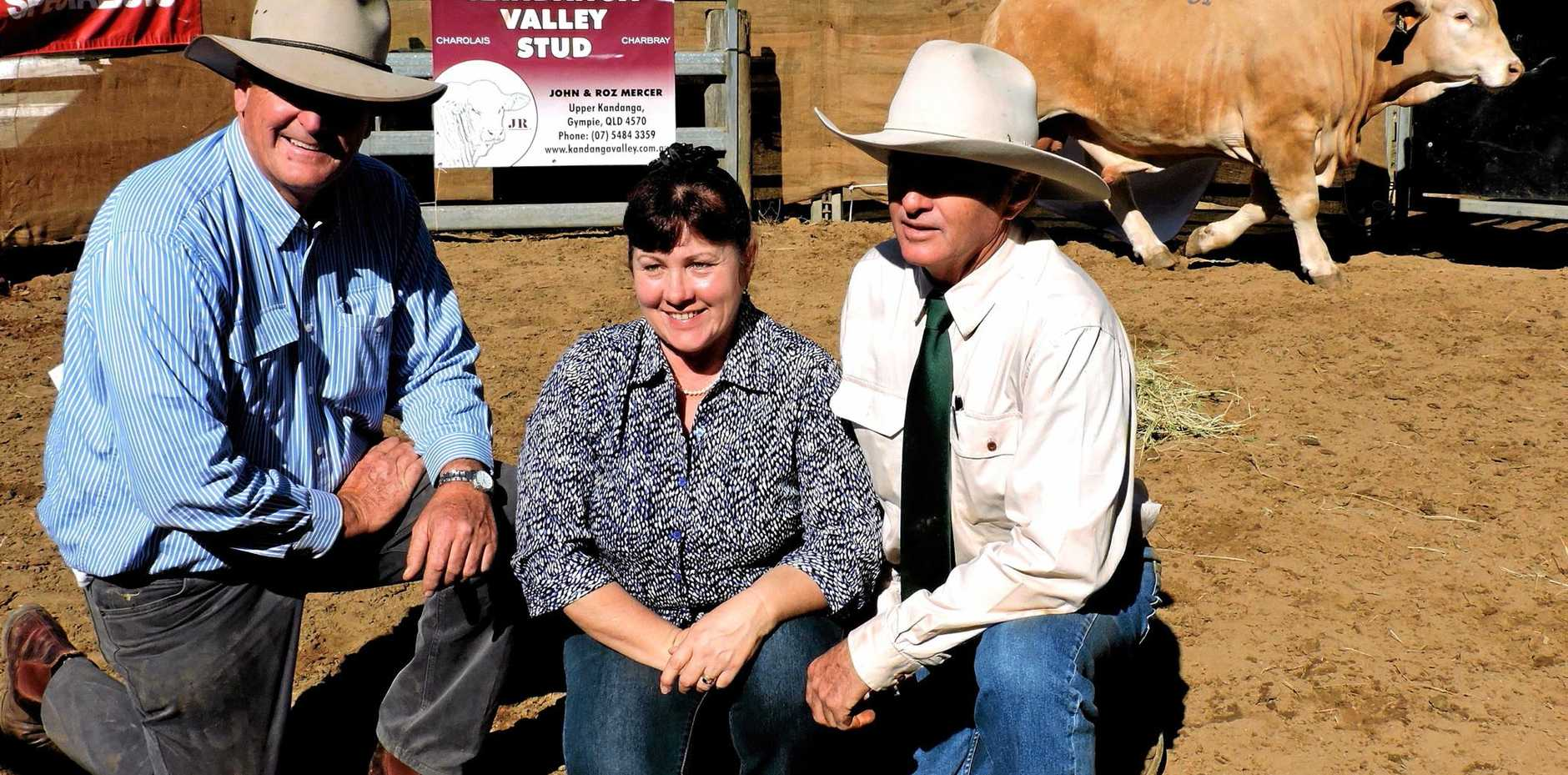 TOP PRICE: Buyer Michael Connolly (left) and Roz and John Mercer with KV Kane, which topped the sale at $14,000.