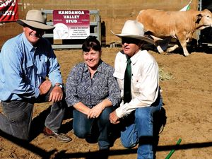 Charolais and charbray sales reap more than $1m