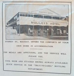 An advertisement for Molloy's Hotel on Sydney St from The Canegrower Weekly, September 7, 1933.