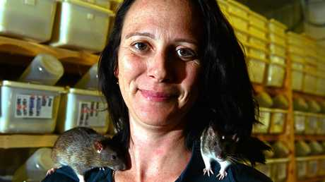Stacey Keady with some rats that she breeds.