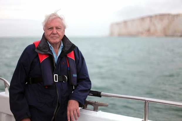 Sir David Attenborough in a scene from the TV special The Death of the Oceans.