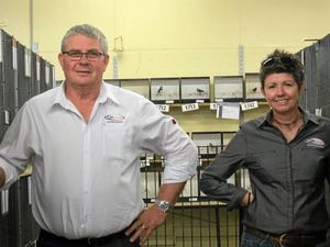 Three tonnes of Sunshine Coast chook feed sets sale for the Ekka
