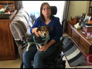 Woman in wheelchair attacked