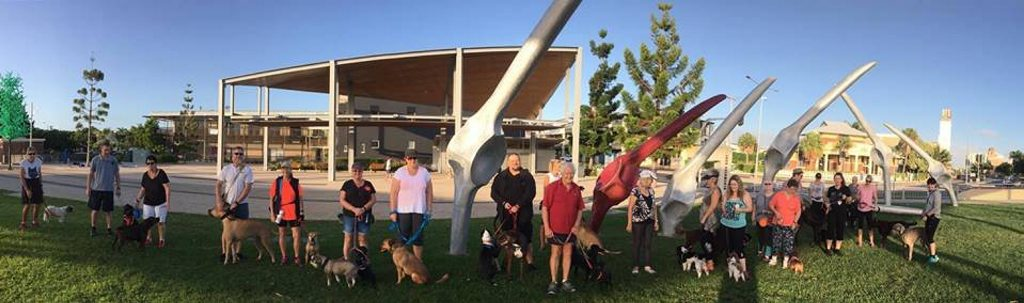 The Mackay Dog Walkers & Social Group is the place to go to meet fellow pet lovers.