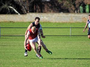 Redbacks battle gamely in Politch's 100th game