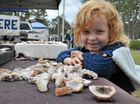 Little Ciara Davis, 4, had a close look at the rocks on display on Sunday.