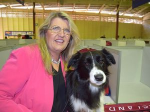 Woofing competition for Glance at the Ekka