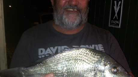 Keith Martin caught this beauty of a bream around the Harwood Bridge recently. The 43cm bream is thought to be one of the biggest bream caught there for some time, and with the Tim the Bream competition on the horizon, this catch is a good sign of things to come. Good spinning Keith.