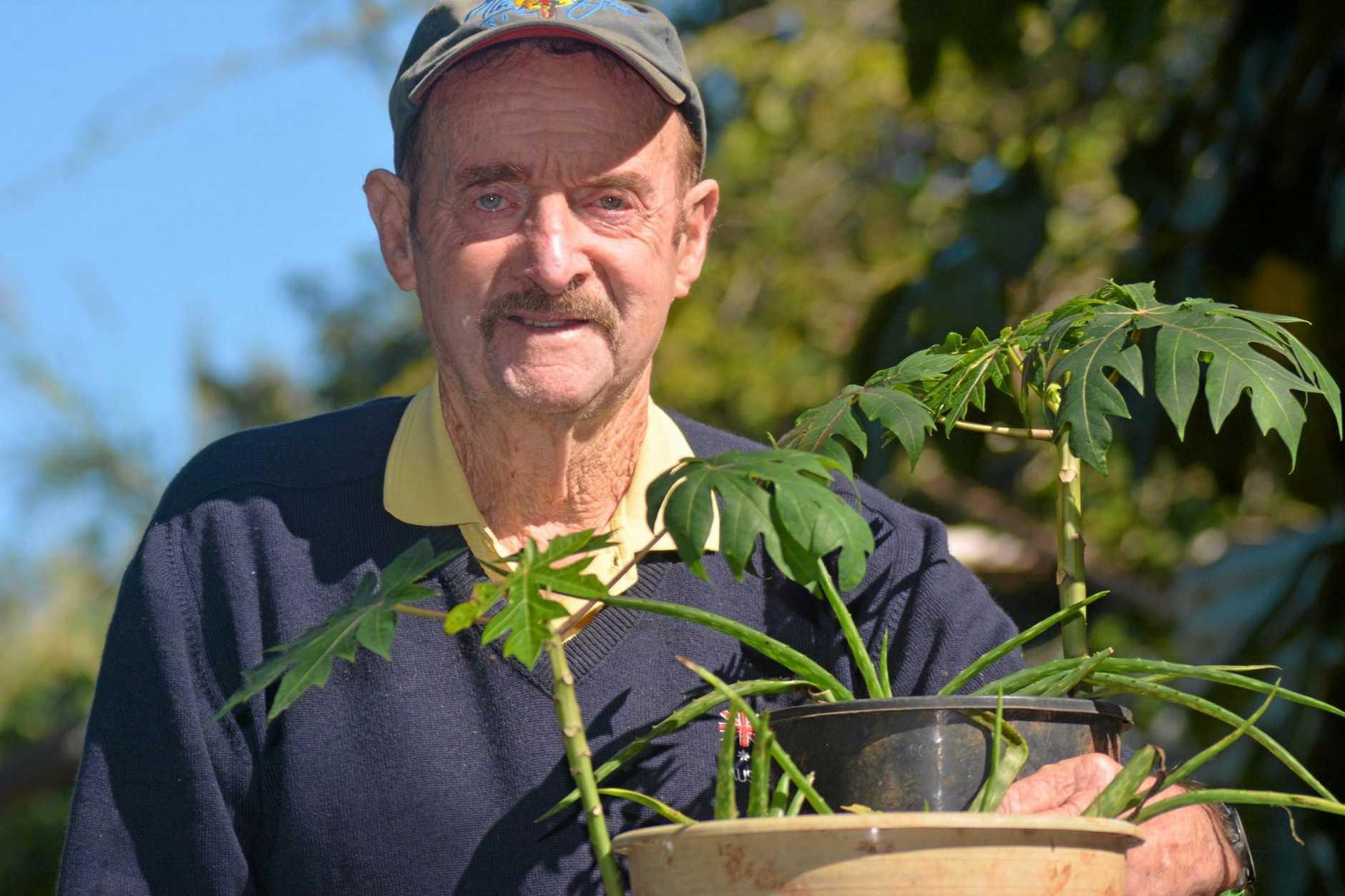 Arthritis sufferer swears by his 'elixir of life' | Seniors News