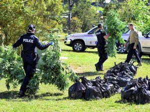 Bundamba grow house.. Possible links to organised crime