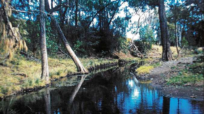 BETTER DAYS: Bunya Creek is a perfect picture in good times, but in severe drought can almost completely dry up.