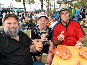 Oceans of seafood a tasty delight at festival: Photos