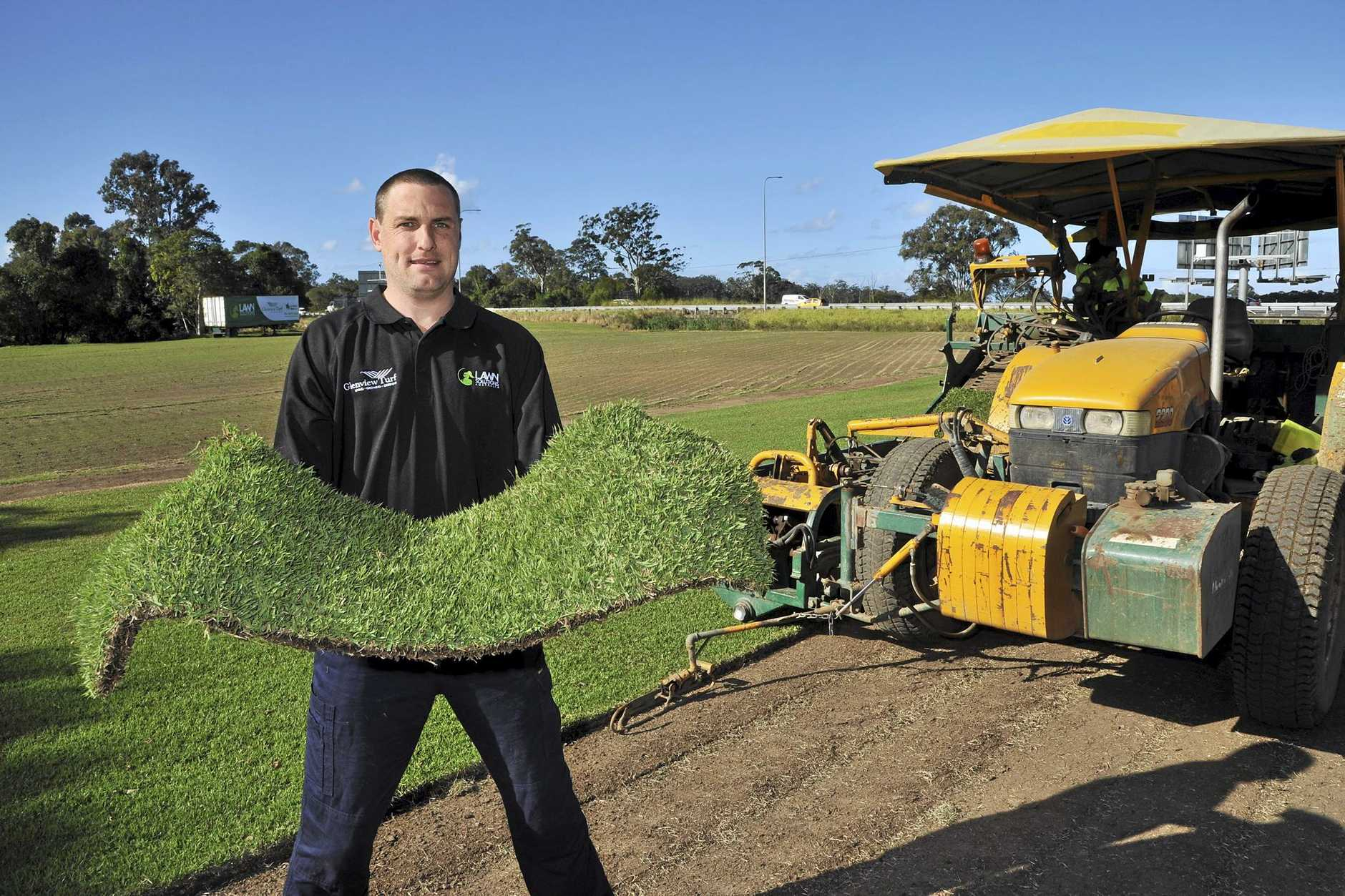 Glenview Turf Farm, Glenview. Sales and Trade manager, Adam Thornton with their Platinum Zoysia grass which has been chosen for the City of Aura.