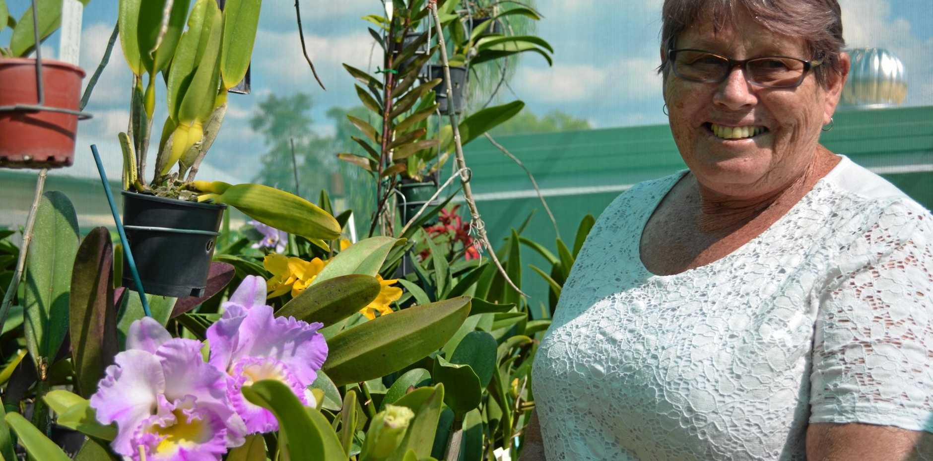 FRESH FLOWERS: Publicity Officer Fay Partridge of the Childers &Isis; District Orchid Society.