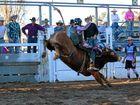 SUCCESS: Kyle Hamilton was a bull ride winner in the Killarney Rodeo.