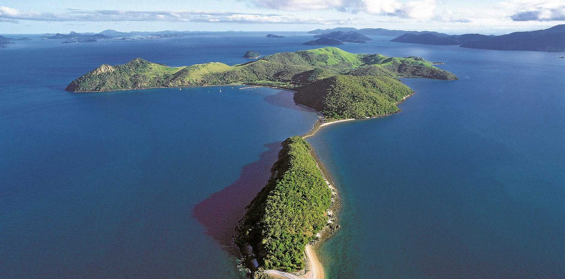 South Molle Island is a picturesque, hilly island surrounded by fringing reefs.