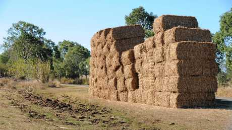 RURAL SCENES: Bales of sugarcane mulch on the outskirts of Bundaberg. Photo: Mike Knott / NewsMail