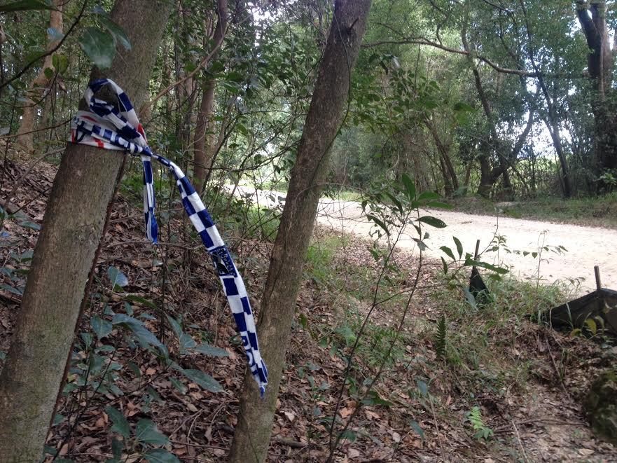 Remnants of the crime scene at Pollards Rd, Dulguigan.