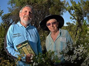 Festival celebrates Coast wildflowers now in bloom