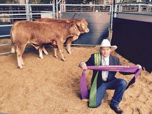 Ekka's champion steers