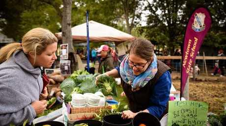 Toowoomba Farmer's Market