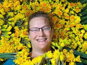 70,000 daffodils arrive ahead of 30-year celebrations