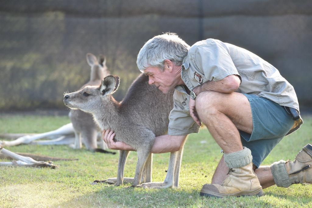 Fraser Coast Wildlife Sanctuary curator Ray Revill.