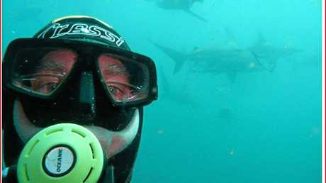 SCN151212 DIVER Caption: Buderim diver Tony Isaacson took years to overcome his fear of sharks.