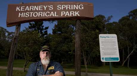 John Thomson of the Toowoomba Live Steamers feared the fate of the club after flying foxes took over the Kearneys Spring park.