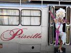 Priscilla is coming to Brunswick Heads