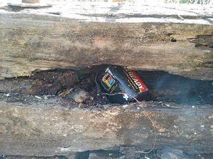 Rally 'terror' threat: Police investigate bridge fire