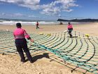 Shark barrier installation could be put on hold