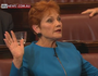 Pauline Hanson targets Muslims with 4 wives
