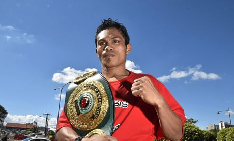 WORLD CHAMPION: Toowoomba boxer Jack Asis with his IBO world super featherweight title belt last year.