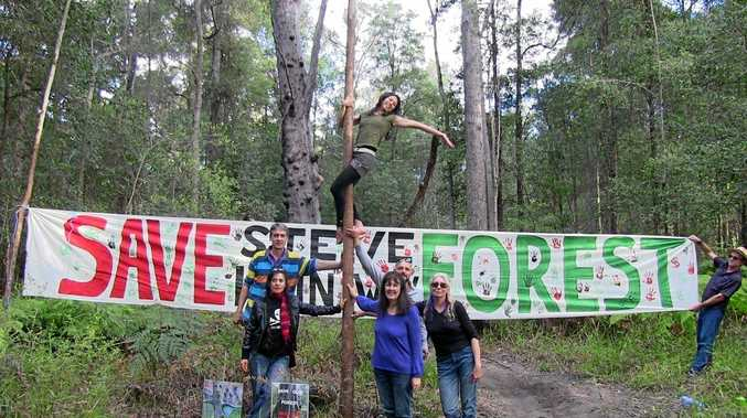 Protesters to stage selfie campaign on Saturday in support of the Steve Irwin Way Forest.