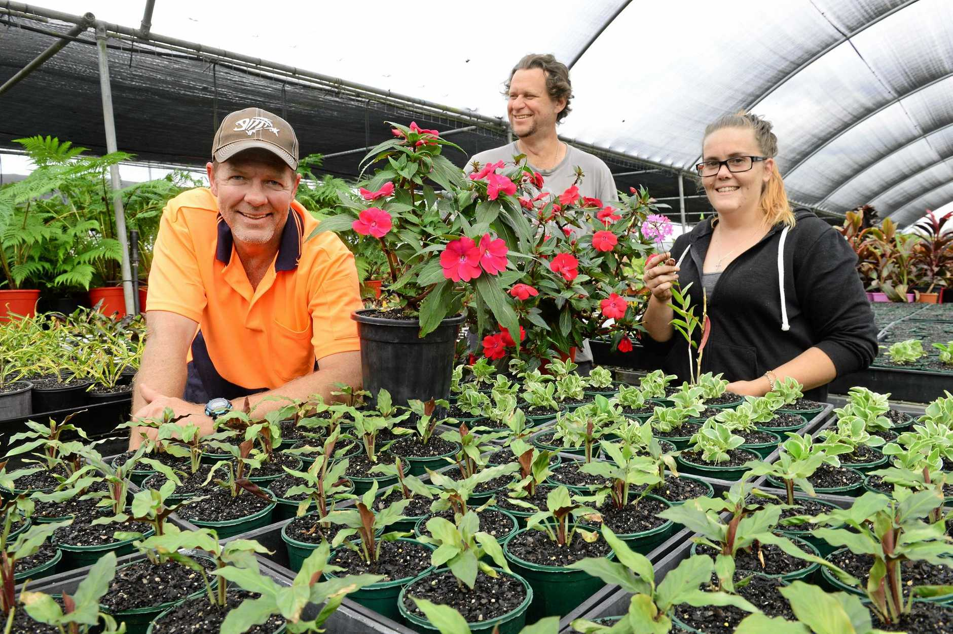 The Salvation Army Watch Them Grow nursery at Riverview are holding a large open day and plant sale. Peter Strong, Wayne Curtis and Elisha Courtney.